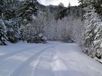 Αετομηλίτσα-τοπίο