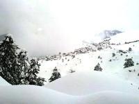Αετομηλίτσα χιονισμένη